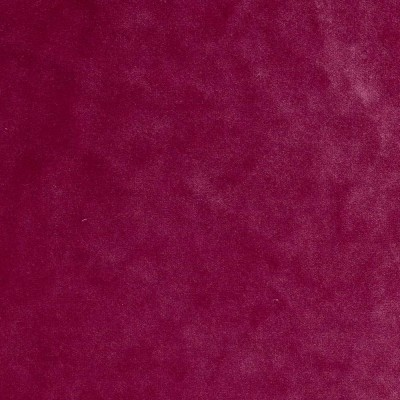 Emilia Color # 19