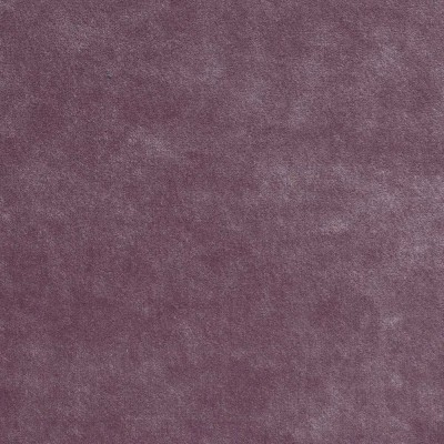 Emilia Color # 23