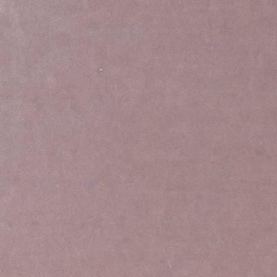 Emilia Color # 24