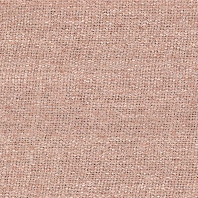 Zinnia Color # 07